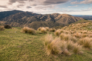 sunset over Wither Hills in Marlborough, South Island, New Zealand