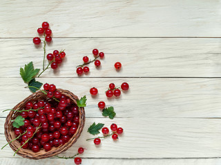 Red currant berries lie in a wicker basket on a wooden background