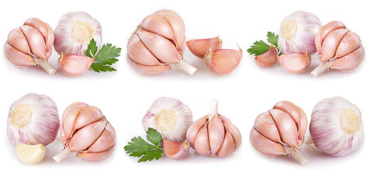 Collection of garlic on white background