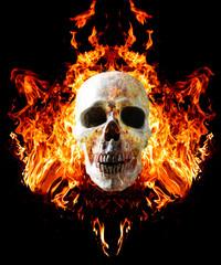 Head skull in flame on dark black background.