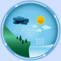 Vector water cycle in nature