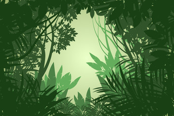 Beautiful view rain forest scene vector wallpaper nature background