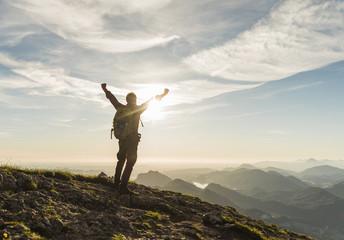 Austria, Salzkammergut, Hiker reaching summit, raising arms, cheering