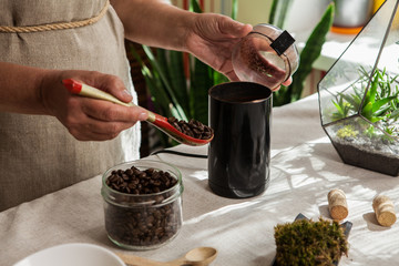 Women's hands putting some coffee beans by wooden spoon in black coffee-grinder