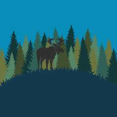 Forest landscape with elk and forest of fir trees. Vector color background.