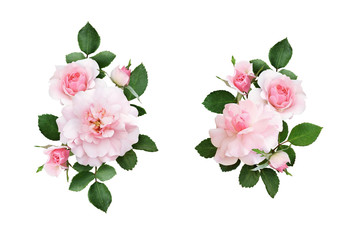 Set of pink rose flowers and green leaves in a floral arrangements