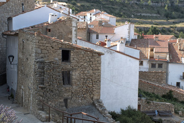 Escena rural. Casas antiguas de un pueblo.