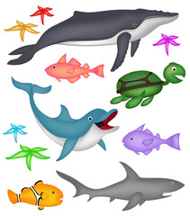 Ocean marine animals - Humpback whale, dolphin, turtle, clown fish, starfish and shark.