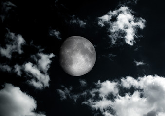 The moon in the night sky