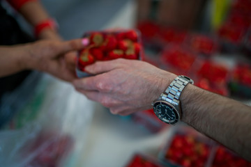 Marketplace with different fruits. Buyer's and sellers hands on colorful berry background outdoors. Sale, shopping and people concept. Close up buying berry at street food market. Selective focus.