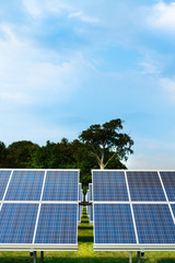 Solar panels with trees against cloudy blue sky