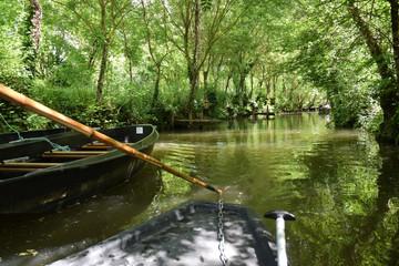 Marais poitevin : promenade en barque sur les canaux à Maillezais, Vendée, Pays de la Loire.