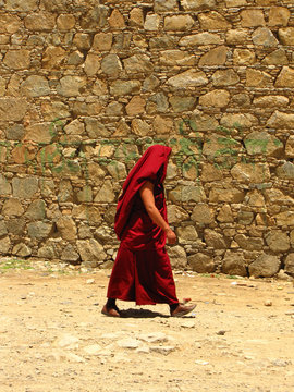 Monk in red clothes walking next to a wall, covering his head as a protection for the sun, at Samye monastery, Tibet, China