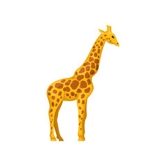 Giraffe, symbol of African savannah vector Illustration on a white background