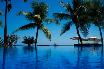 Vacation background with infinite swimming pool and palm trees. Blue ripped water in swimming pool with reflection green palm trees. Tropical resort pool with lounge chairs and ocean view.