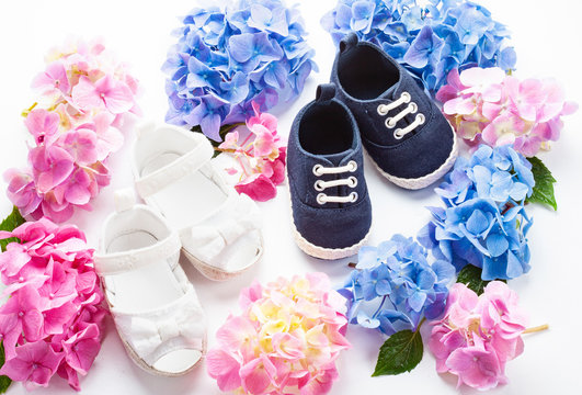 Cute newborn baby boy and girk shoes with hortensia flowers decoration. Baby shower, birthday, invitation or greeting card mockup