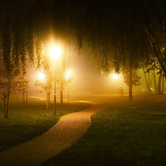 Autumn. A view of the lit road in the park at night, Latvia