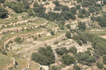 Terrazas de cultivo en el alto Maestrat