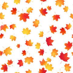Maple seamless pattern. Autumn vector background