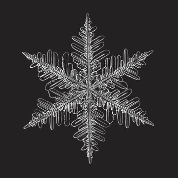 Snowflake isolated on black background. This vector illustration based on macro photo of real snow crystal: small stellar dendrite with good hexagonal symmetry, elegant shape and six thin, long arms.
