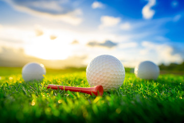 close up the golf ball and red tee pegs on the green background with sunset Wall mural