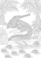 Coloring Page. Coloring Book. Colouring picture with crocodile.
