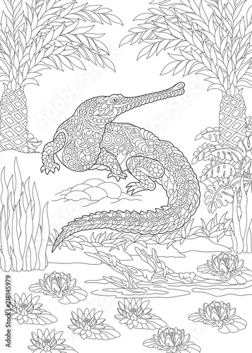 Coloring Page Coloring Book Colouring Picture With Crocodile