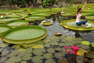 A girl poses for a photo on a giant waterlily leaf during an annual leaf-sitting event in Taipei