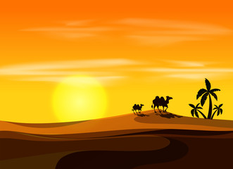 Camel at sunset desert