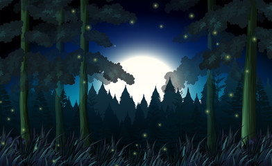 A forest in dark night