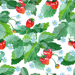 Seamless patterns with strawberry leaves, flowers and ripe berries on white. Watercolor illustration with summer season background, botanical drawings for print, fabric, textile