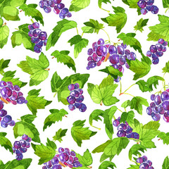 Seamless patterns with currant berries and leaves on white. Watercolor illustration with summer season background, botanical drawings for print, fabric, textile