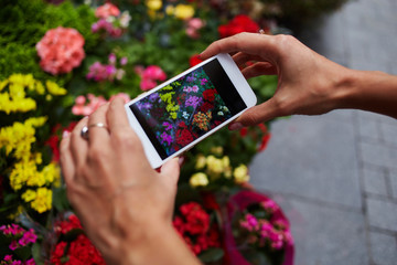 Instagram photographer blogging workshop concept. Close up women's hands holding phone and taking photo of stylish flowers. Colorful flowers on the street market. Space for text. Selective focus.