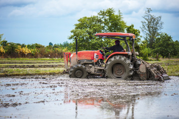 tractor is preparing the area for growing rice