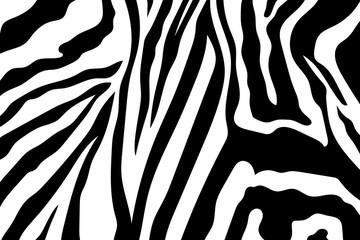 Zebra Stripes Pattern. Zebra print, animal skin, tiger stripes, abstract pattern, line background, fabric. Amazing hand drawn vector illustration. Poster, banner. Black and white artwork, monochrom