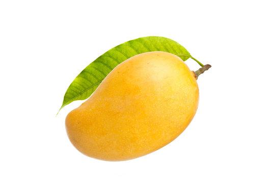 Mango and leaf isolated white background