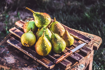 Fresh juicy pears on an old wooden board. Pears with water drops.