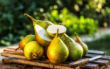 Juicy fresh pears on an old wooden board. Juicy ripe pears in a sunny garden. Harvesting. Garden fruits