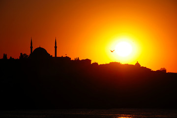 Sunset silhouette, seagulls and Hagia sophia at sunset, Istanbul, Turkey