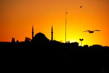 Sunset silhouette, seagulls and Hagia sophia at sunset, Istanbul, Turkey