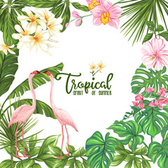 Template of poster, banner, postcard with tropical flowers and plants and flamingo bird on white background. Stock vector illustration
