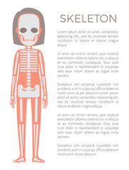 Skeleton Poster of Woman Body Vector Illustration