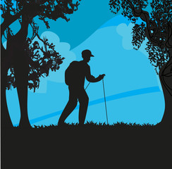 Nordic walking - active man exercising outdoor