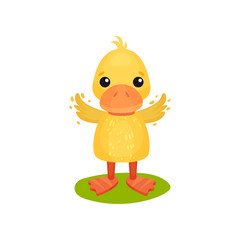 Cute little yellow duckling character waving wings vector Illustration on a white background