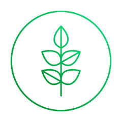 ПечатьVector leaf thin linear icon for ecology and organic emblem with outline style.