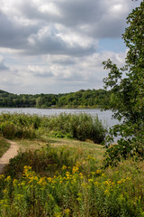Picture from the lake lauer in leipzig .It is a natural lake in a forest.It is a part of the tourism concept new lakeland.This is a beautiful way for cyclists,pedestrians in the natur.