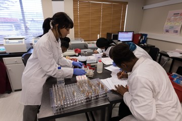 Laboratory technician analyzing chemical solution