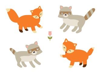 cute fox and raccoon friends