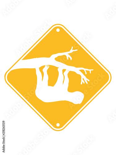 Gelb Achtung Vorsicht Warnung Schild Hinweis Baum Ast Kopf über