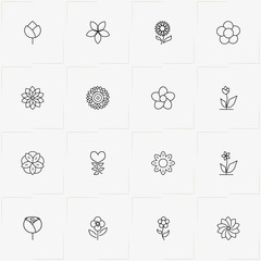 Flowers line icon set with flower and rose